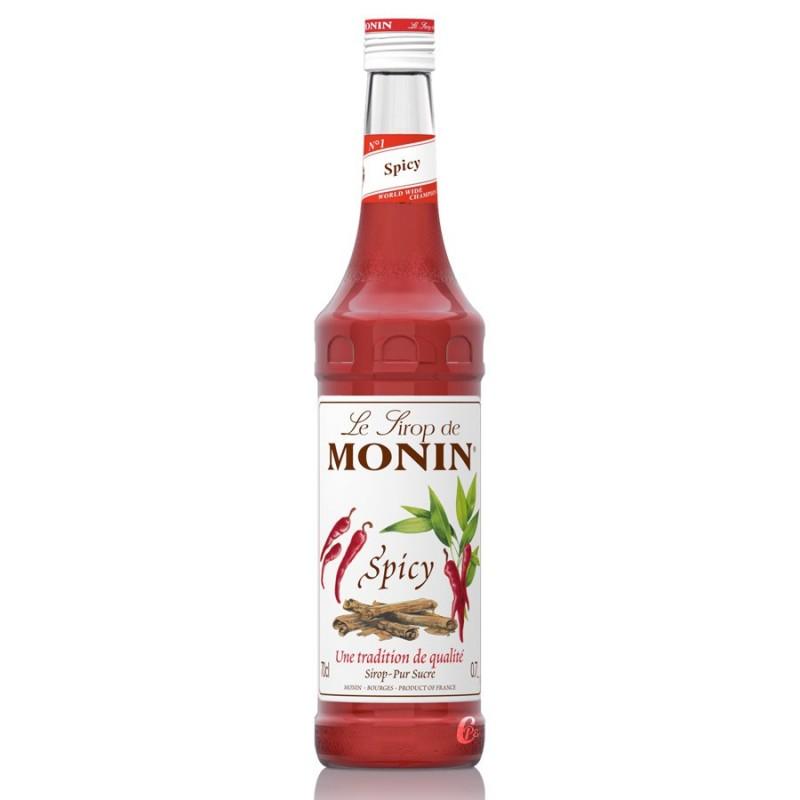 Sirop Monin Spicy 70 cl