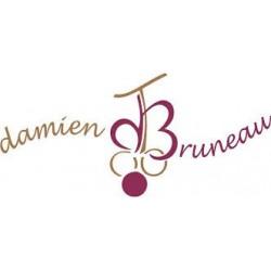 Saint Nicolas de Bourgueil Domaine Damien Bruneau